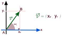 representação gráfica do vetor