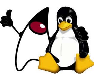 p ginas java jsp   instalando tomcat no linux