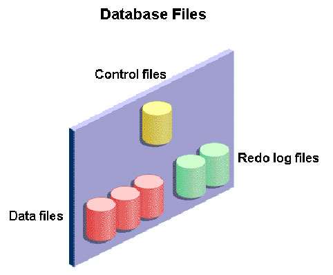 Uma das tarefas de um dba é conhecer os tipos de arquivos de banco de dados